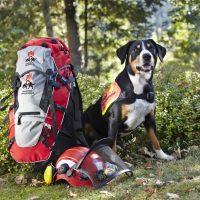 BRH Bundesverband Rettungshunde e.V.